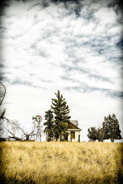 Abandoned House Wall Art - Photograph - Hideaway by Humboldt Street
