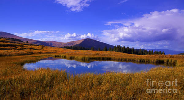 Photograph - High Country Pond by Barbara Schultheis