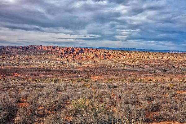 Photograph - High Desert Beauty by John M Bailey