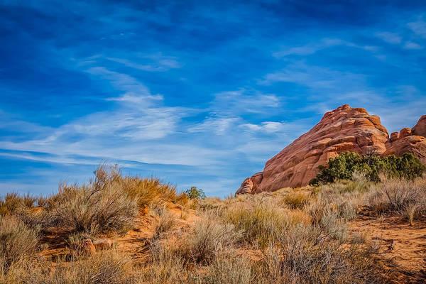 Photograph - High Desert Inspiration by John M Bailey