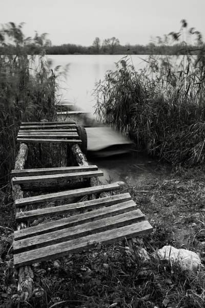 Photograph - High Hopes by Davor Zerjav