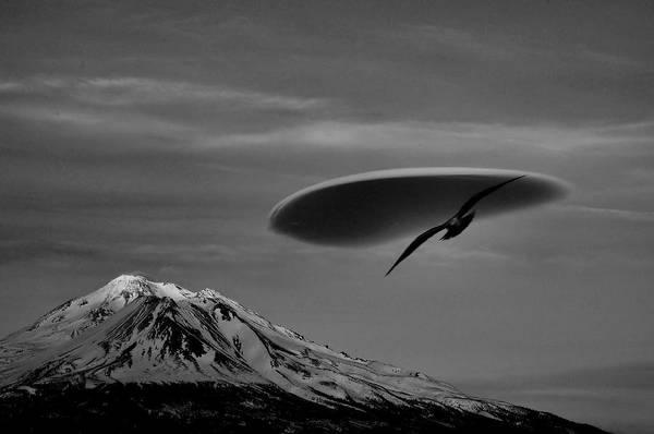 Wall Art - Photograph - High In The Sky by Peter Schumacher
