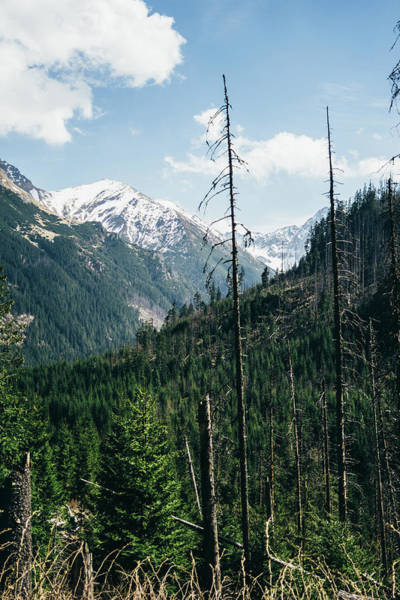 High Tatras Wall Art - Photograph - High Mountains In Poland by Pati Photography