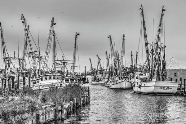 Wall Art - Photograph - High Noon Fishing On The Outer Banks Bw by Dan Carmichael