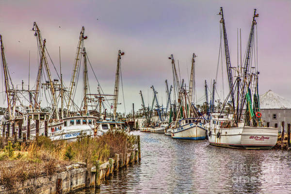 Wall Art - Photograph - High Noon Fishing On The Outer Banks by Dan Carmichael