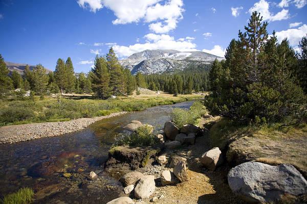 Tioga Photograph - High Sierras Stream by Bonnie Bruno