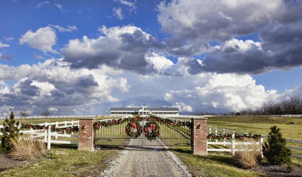 Photograph - High Spirits Farm by Cricket Hackmann