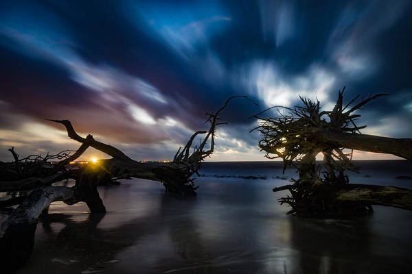 Photograph - High Tide At Driftwood Dawn by Chris Bordeleau
