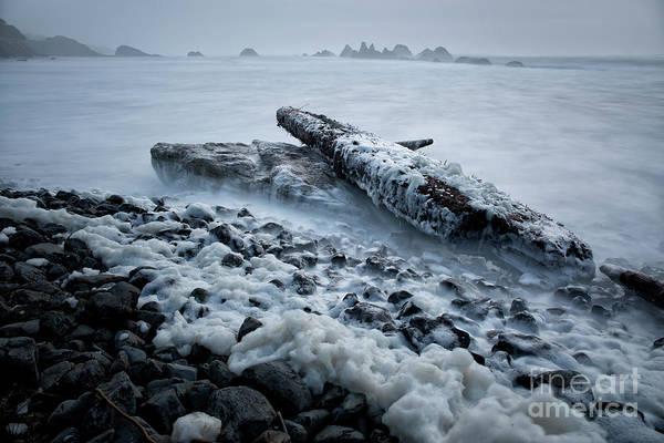 Wall Art - Photograph - high tide at Seal Rock State Park  by Masako Metz