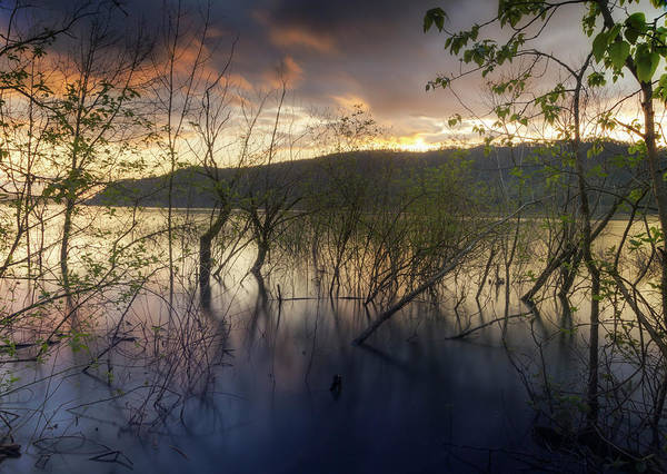 Photograph - High Water Sunset by Jon Ares