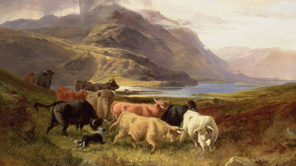 Wall Art - Painting - Highland Cattle With A Collie by Joseph Adam