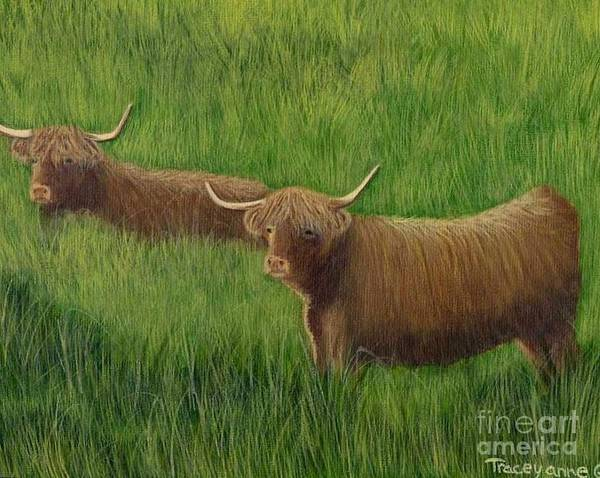 Painting - Highland Cows by Tracey Goodwin