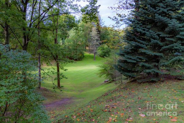 Photograph - Highland Park Glen by William Norton
