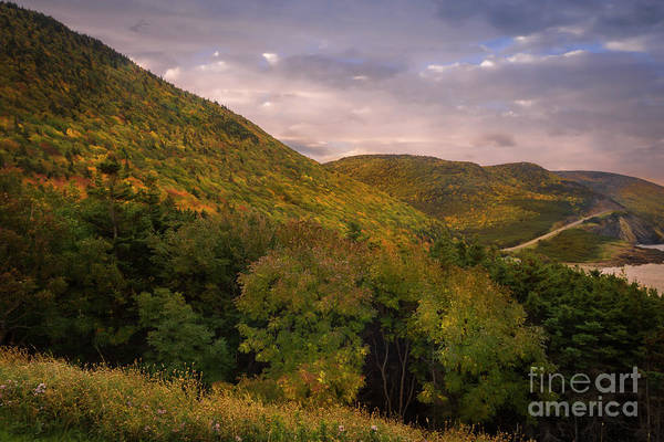Cabot Trail Photograph - Highland Road by Nancy Dempsey