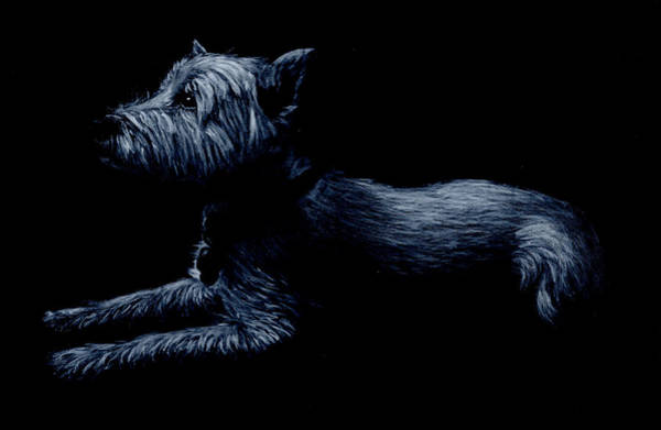 Painting - Highland Terrier by John Neeve