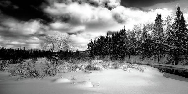 Photograph - Highlights In The Snow by David Patterson