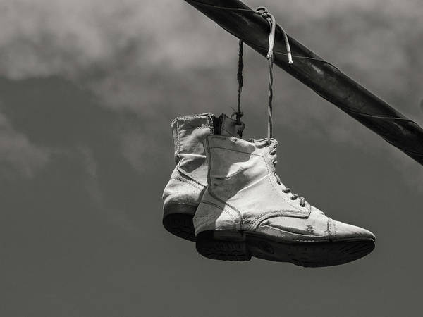 Photograph - Hightops On Wire by Robin Zygelman
