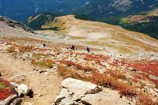 Photograph - Hikers Descending  Mount Yale Colorado by Steve Krull