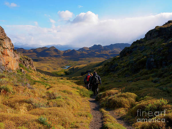 Wall Art - Photograph - Hiking In Torres Del Paine National Park Patagonia Chile by Louise Heusinkveld
