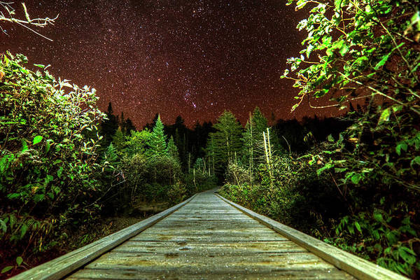 Photograph - Hiking Into The Night Adirondack Log Keene Valley Ny New York by Toby McGuire