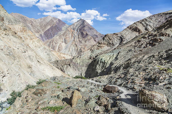 Photograph - Hiking Path In Ladakh by Didier Marti