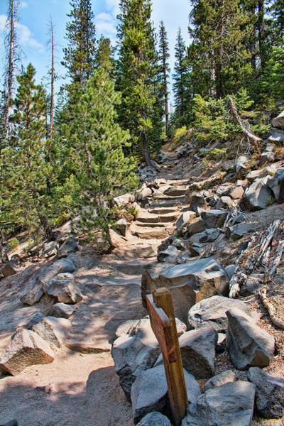 Photograph - Hiking To Devils Postpile by Kristia Adams
