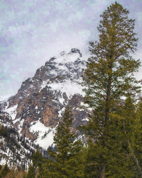 Photograph - Hiking To Taggart Lake by Belinda Greb
