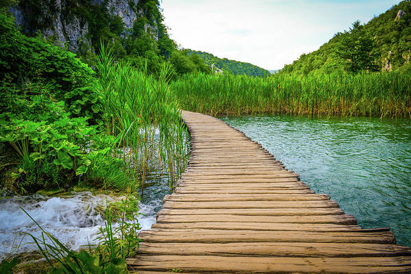 Photograph - Hiking Trail Over A River by Brandon Bourdages