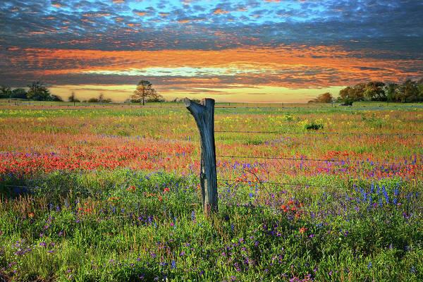 Hill Country Heaven Art Print