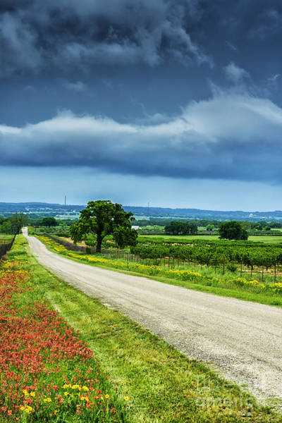 Photograph - Hill Country Of Texas by Thomas R Fletcher