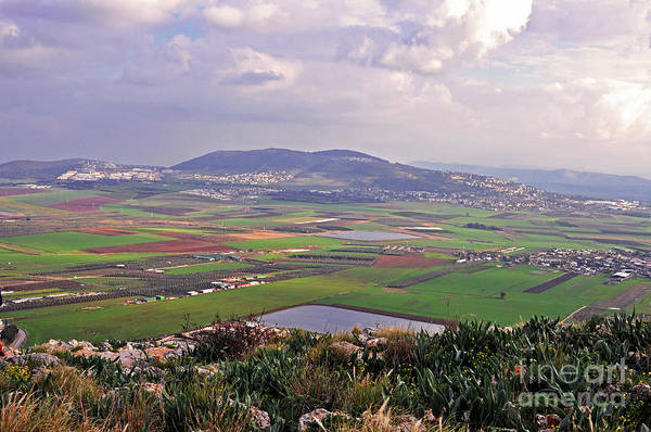 Wall Art - Photograph - Hill Of Moreh by Lydia Holly