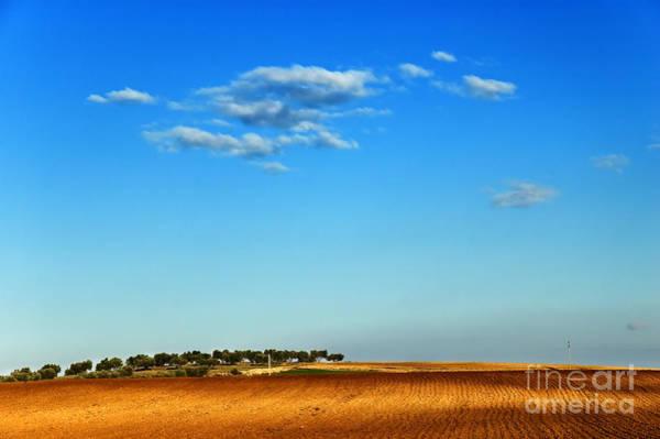 Photograph - Hill by Silvia Ganora