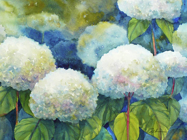 Painting - Hills Of Snow Hydrangeas 1 by Janet Zeh