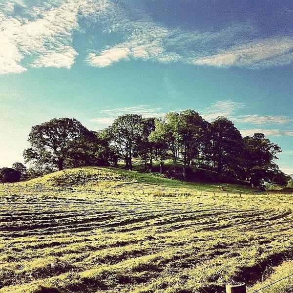 Green Photograph - #hills #trees #landscape #beautiful by Samuel Gunnell