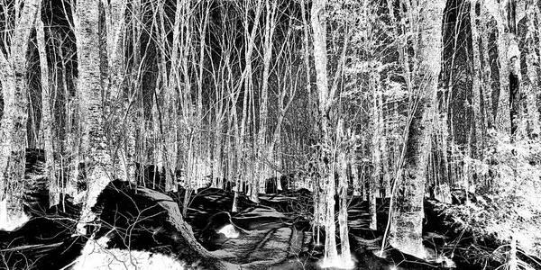 Adirondack Mountains Digital Art - Hillside Shadows by David Patterson