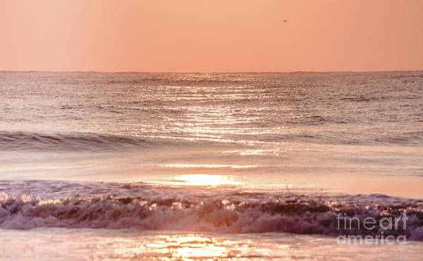 Photograph - Hilton Head Sunrise by Andrea Anderegg