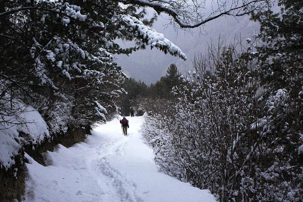 Photograph - Himalayan Trail by Aidan Moran