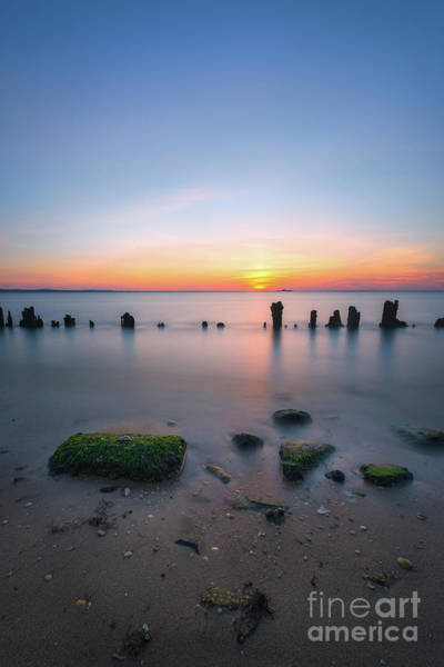 Wall Art - Photograph - Hint Of Lime Sunset  by Michael Ver Sprill