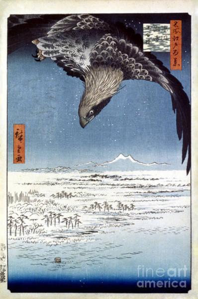 Photograph - Hiroshige: Edo/eagle, 1857 by Granger