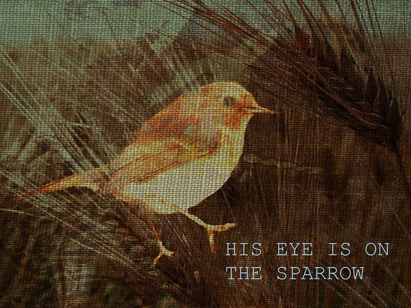 Sparrow Mixed Media - His Eye Is On The Sparrow by Suzanne Carter