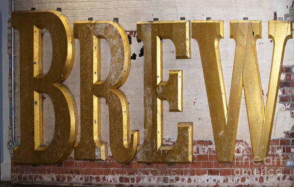 Photograph - A Golden Brew by Brenda Kean