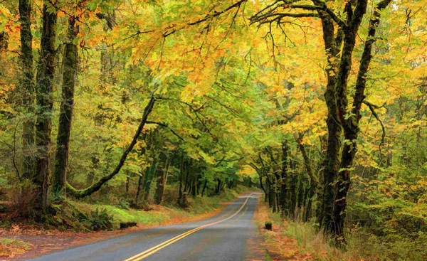 Photograph - Historic Columbia River Highway Fall Colors by Wes and Dotty Weber
