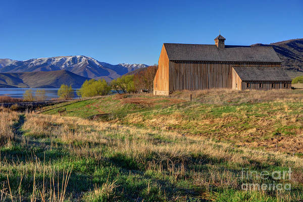 Tate Photograph - Historic Francis Tate Barn - Wasatch Mountains by Gary Whitton