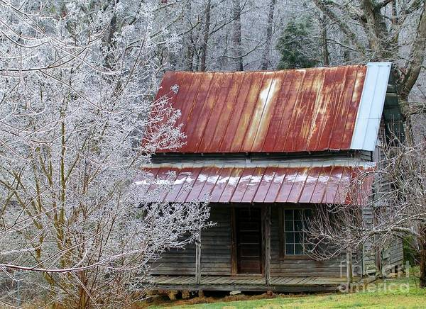 Historic North Carolina Cabin Art Print