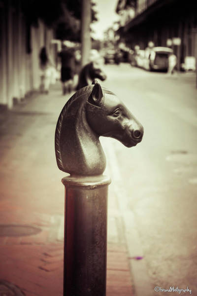 Wall Art - Photograph - Hitching Post New Orleans by Debra Forand