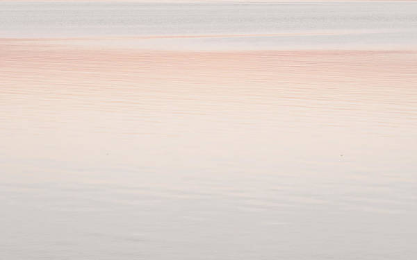 Photograph - Pink Sunset by Andrea Anderegg