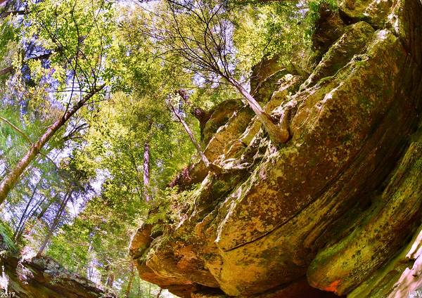 Photograph - Hocking Hill State Park Rock Formations by Lisa Wooten