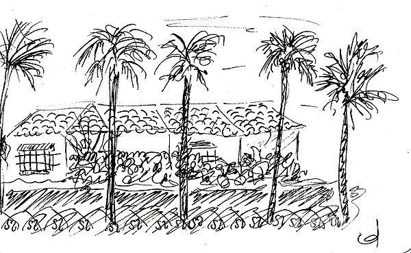 Drawing - Hogar Municipal De La Tercera Edad In Torremolinos by Chani Demuijlder