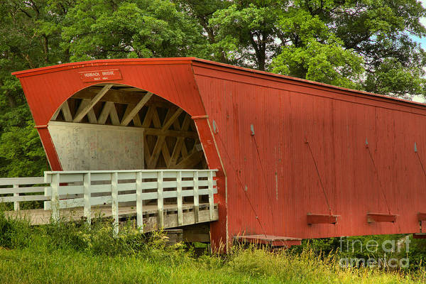 Photograph - Hogback Bridge In The Forest by Adam Jewell
