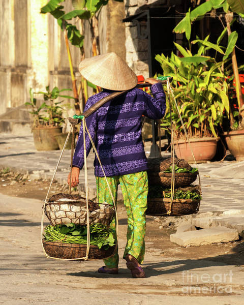 Photograph - Hoi An Hawker 02 by Rick Piper Photography